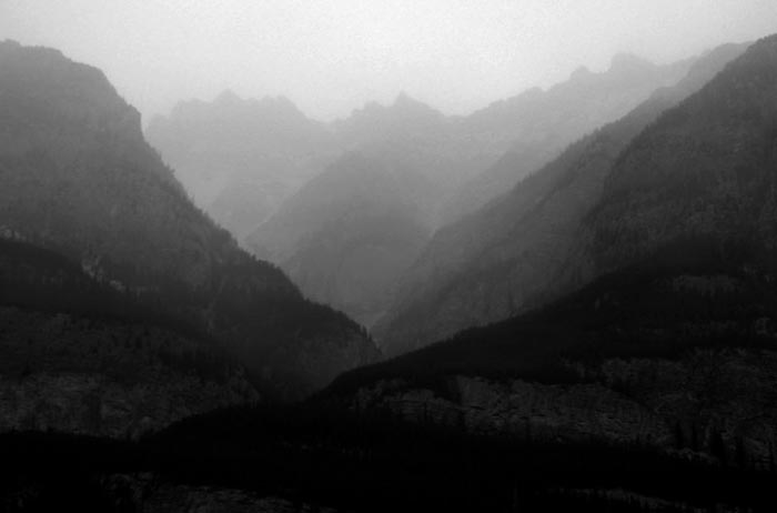 MIsty Valley, Jasper National Park