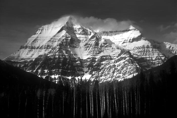 Mount Robson with Aspens