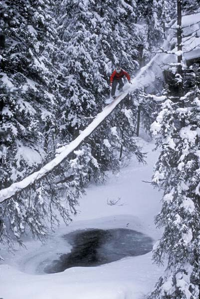 Log Ride, Banff, Alberta - Andrew Hardingham